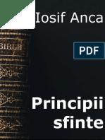 Iosif Anca - Principii sfinte