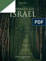 Iosif Anca - Împărații lui Israel