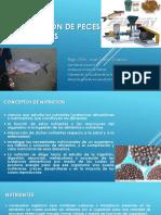 PPT - Curso Nutrición y Alimentación de Peces Amazónicos - CITEacuícola UPCH