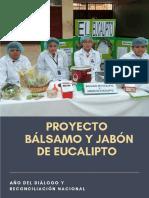 Brochure Bio Digest Ores Esp