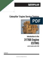 cat-3176b 9ck-3196-service-training.pdf