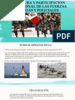 Estructura y Participacion Institucional de Las Fuerzas Armadas
