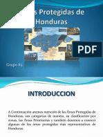 reasprotegidasdehonduras-120410222442-phpapp01