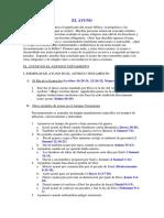 Formato de Capacidad Financiera y Organizacional 0 0