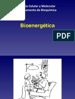 2 Bioenergetica básico 1