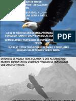 05-Las Águilas..pps