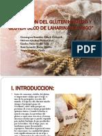 Obtencion Del Gluten Húmedo y Gluten Seco