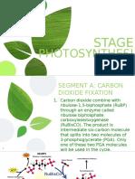 Photosynthesis 1 2