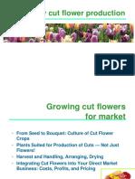 Greenhouse Cutflower Production_HollyScoggins.pdf