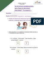 Evaluación de Lectura Complementaria SAPO Y SEPO UN AÑO ENTERO