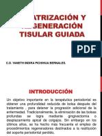 cicatrizacionyregeneraciontisularguiada-120506122039-phpapp02.pptx