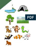 Habitat Haiwan