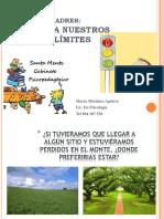 tallerlimites-131011162036-phpapp01.pdf