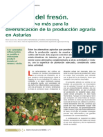 Cultivo Fresón - Ejemplo de Ingresos 1400 m2(No EKO)