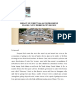 Impact Of  Pollution On Environment Floods Cause.doc