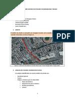 informe_modificado_liz.docx