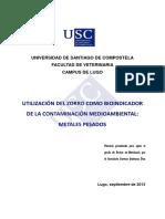 61965144.pdf