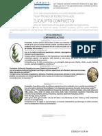 eucalipto-compuesto