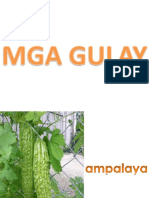 mga-gulay.pptx