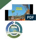 biogeoquimicos