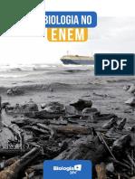 analise_enem2017.pdf