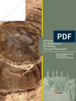 novo-marco-legal-da-mineracao-no-brasil-fase.pdf