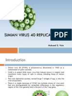 Simian Virus 40 Replication