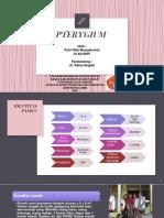 pterygium.pptx