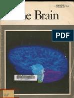 Scientific American - The Brain (1979)