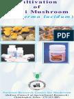 folder_ganoderma.pdf