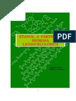 etanol_lignocelulosicorg.pdf