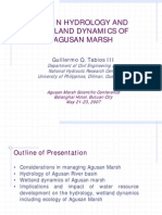 Basin Hydrology and Wetland Dynamics of Agusan Marsh