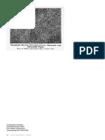 grey60_pp082-109_martin_finaltoed.pdf