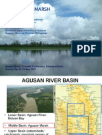 The Agusan Marsh