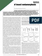 truman.pdf