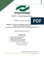 73440802-2-1-viabilidad-financiera.pdf