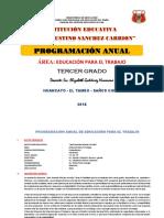 dokumen.tips_ept-tic3-programa-anual-3ro.docx