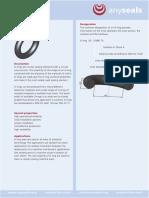 o-ringe_en_aeu.pdf