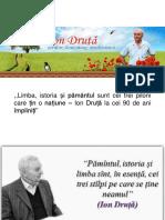 ion_druta