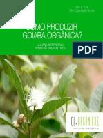 como-produzir-goiaba-org