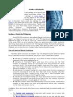1spinal Cord Injury
