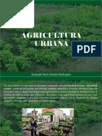Armando Nerio Guedez Rodríguez - Agricultura Urbana