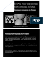 entomologia                                                                                 ii                                                                                 -                                                                                 rvo                                                                                 -                                                                                 plagas                                                                                 citricos.pdf