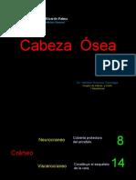 Cabeza 1era Clase Dr Romero
