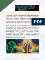 10 PLANTAS QUE ATUAM NO CAMPO DE ENERGIA DOS CHAKRAS.pdf