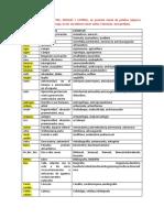 afijos-y-bases-lc3a9xicas.pdf