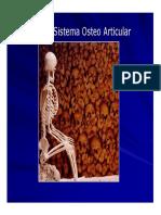 Tac Osteo Articular