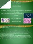 Mecanismos Inespecificos de defensa. inmunologia