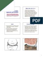 Biomecanica - Tendões e Ligamentos Connective.pdf