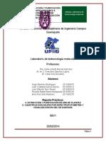 Reporte_Practicas_4._EXTRACCION_Y_PURIFI.doc